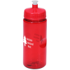 Mini Mountain Bottle - 22 oz.