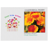 Impression Series Seed Packet - California Poppy
