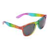 Risky Business Sunglasses - Rainbow