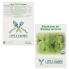 Organic Seed Packet - Cilantro