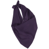 View Image 1 of 2 of Solid Polyester Scarf
