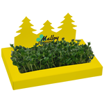 Tree Line Sprout Box