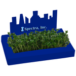 City Line Sprout Box