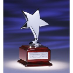 View a larger, more detailed picture of the Optima Star Award