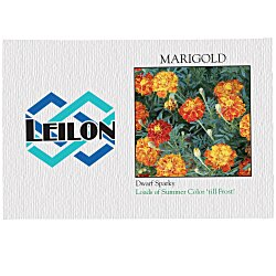 View a larger, more detailed picture of the Impression Series Seed Packet - Marigold