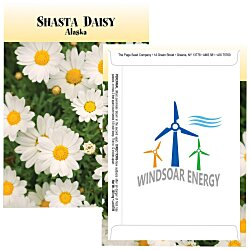 View a larger, more detailed picture of the Standard Series Seed Packet - Shasta Daisy