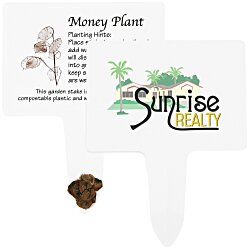 View a larger, more detailed picture of the Compostable Seed Stakes - Money Plant