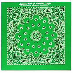 View a larger, more detailed picture of the Paisley Bandana - USA Made