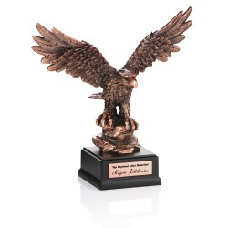 View a larger, more detailed picture of the Determination Bronze Finished Eagle Award