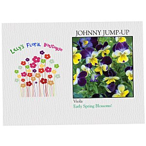 Impression Series Seed Packet - Johnny Jump-Up Main Image
