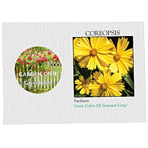 Impression Series Seed Packet - Coreopsis Main Image