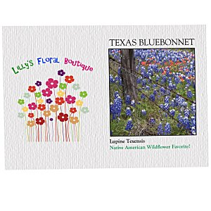 Impression Series Seed Packet - Texas Bluebonnet Main Image