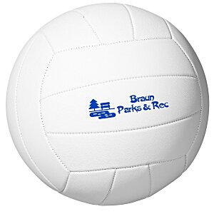 Full Size Synthetic Leather Volleyball Main Image