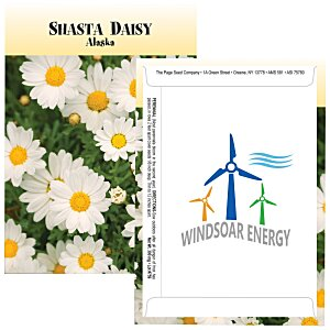 Standard Series Seed Packet - Shasta Daisy Main Image