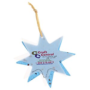 Seeded Paper Ornament - Star Main Image