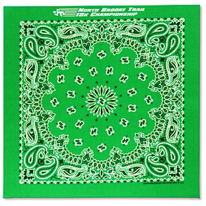 Paisley Bandana - USA Made Main Image