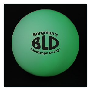 Light Up Garden Ball Main Image