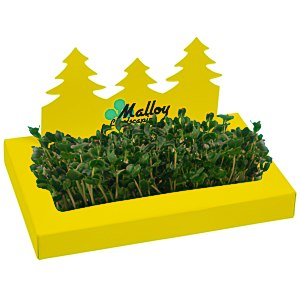 Tree Line Sprout Box Main Image