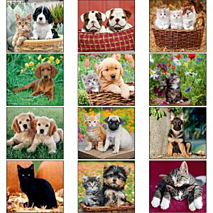 Puppies & Kittens Calendar - Mini Image 1 of 1