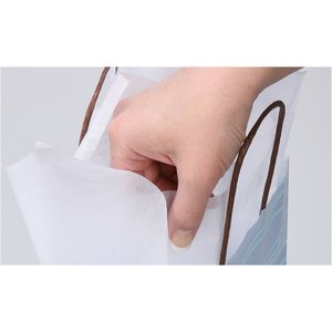 Tissue Paper - White Image 1 of 1