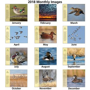 Ducks Unlimited Calendar Image 1 of 1