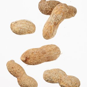 Ballpark Peanuts - 3 oz. - Clear Bag Image 1 of 1