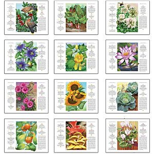 The Old Farmer's Almanac Calendar - Gardening - Stapled Image 1 of 1