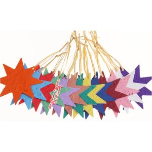 Seeded Paper Ornament - Star