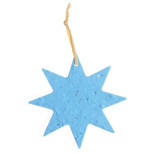 Seeded Paper Ornament - Star Image 2 of 2