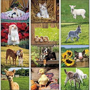 Baby Farm Animals Calendar - Stapled Image 1 of 1