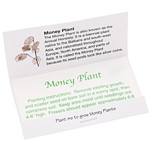 Matchbook Seed Packet - Money Plant Image 1 of 1