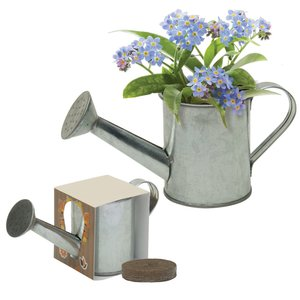Mini Watering Can Blossom Kit Image 1 of 2