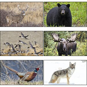 Wildlife Calendar with 2-Month View Image 1 of 1