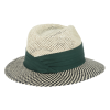 View Extra Image 2 of 2 of AHEAD Straw Wellington Hat