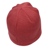 View Extra Image 1 of 2 of The North Face Mountain Beanie