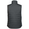 View Extra Image 1 of 2 of Carhartt Gilliam Vest