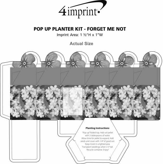 Imprint Area of Pop Up Planter Kit - Forget Me Not