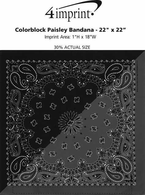 "Imprint Area of Colorblock Paisley Bandana - 22"" x 22"""