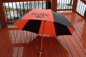 "Customer photo from Gina of our 64"" Windproof Golf Umbrella - 64"" Arc"