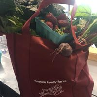 "Customer photo from Kelly of our Value Grocery Tote - 15"" x 13"""